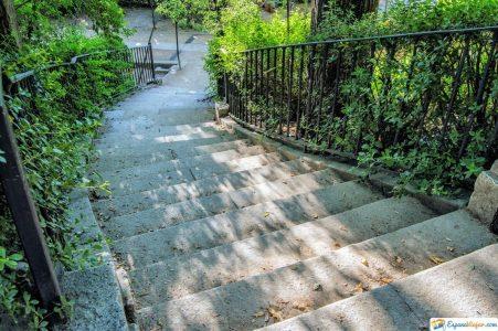 escaleras jardin botanico