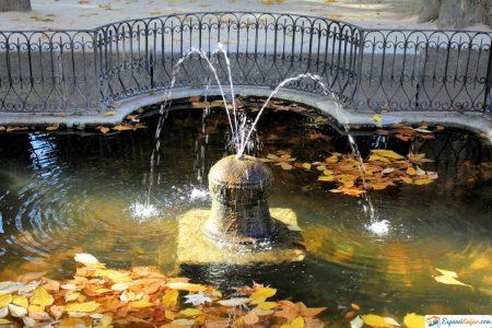 fuente del jardin botanico