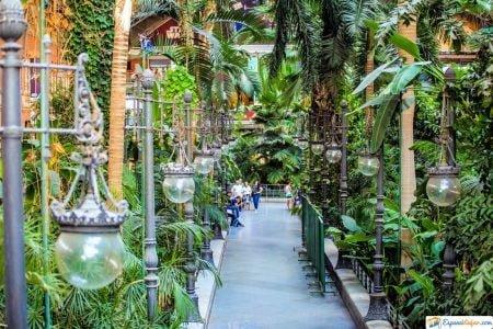 invernadero del botanico madrid
