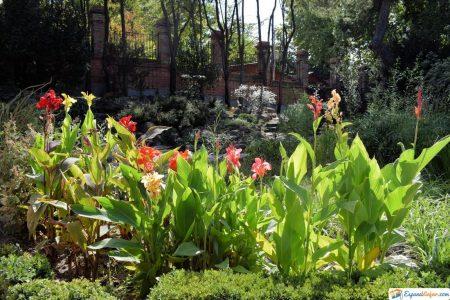 jardin botanico en madrid