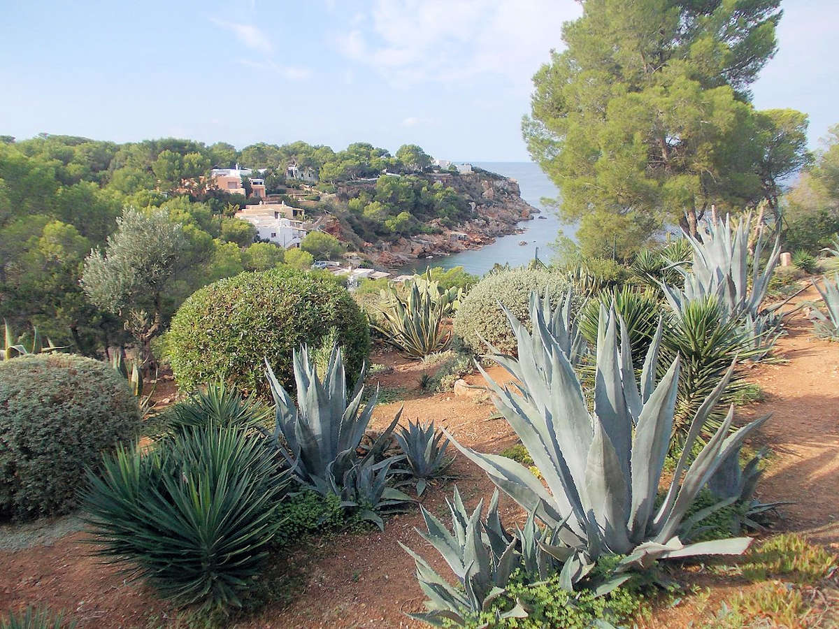 senderismo-en-san-José-Ibiza