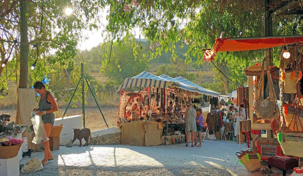 Mercadillo de las Dalia en San Carlos de Peralta