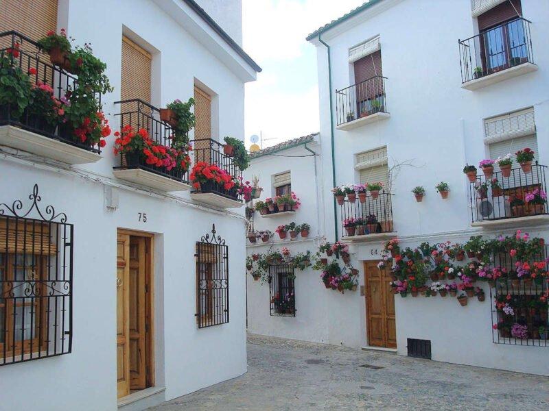 Patios decorados con flores en Priego de Córdoba