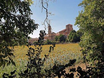 SANTO DOMINGO DE SILOS-Pueblo de Burgos