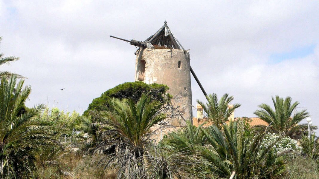 Molino en Palo de Cabos