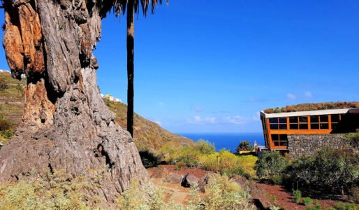 ICOD DE LOS VINOS-Pueblos más bonitos de Tenerife