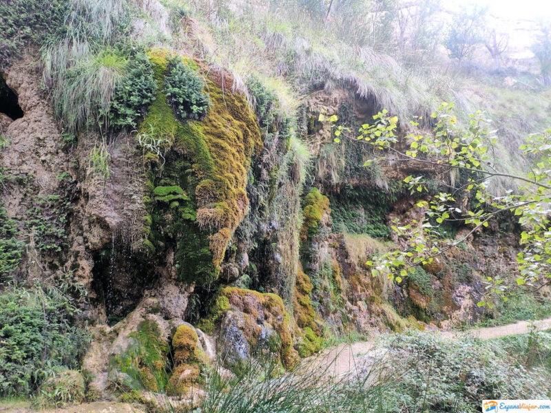 Camino hacia Aguallueve