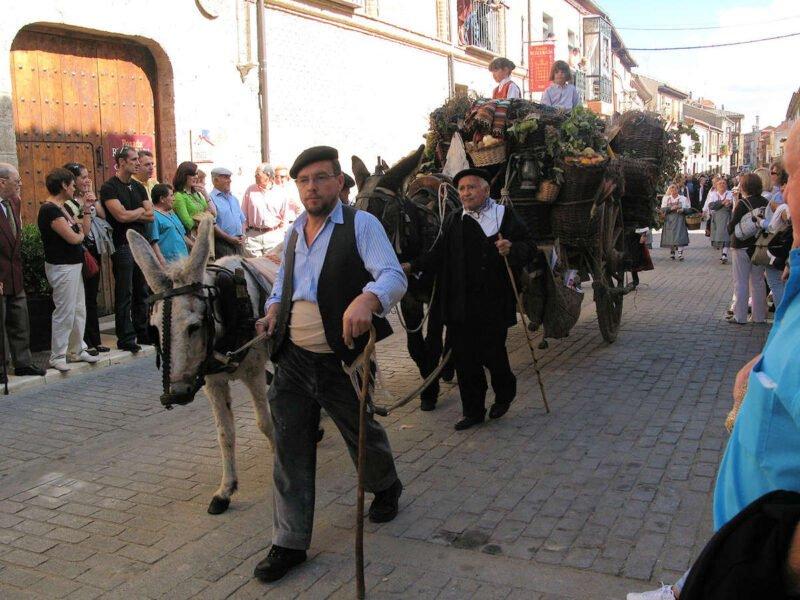 Fiestas de la Vendimia en Toro
