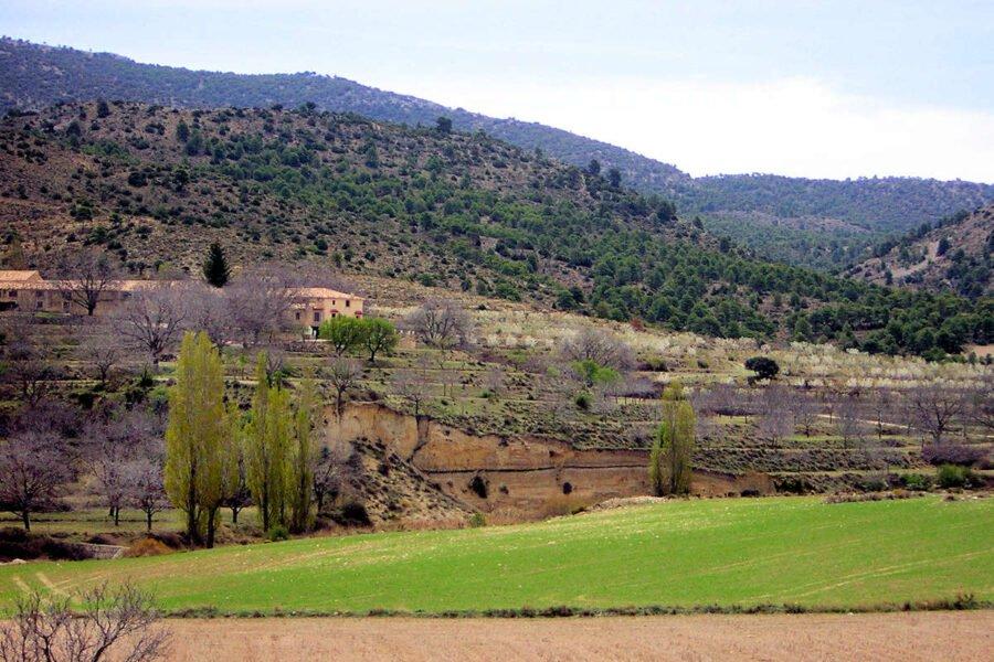 Nerpio en Albacete