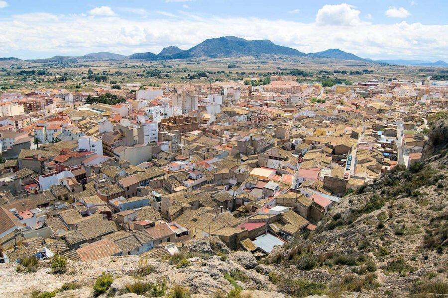 Visita Sax en Alicante