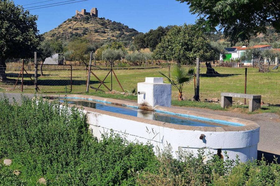Pilar de la Calva