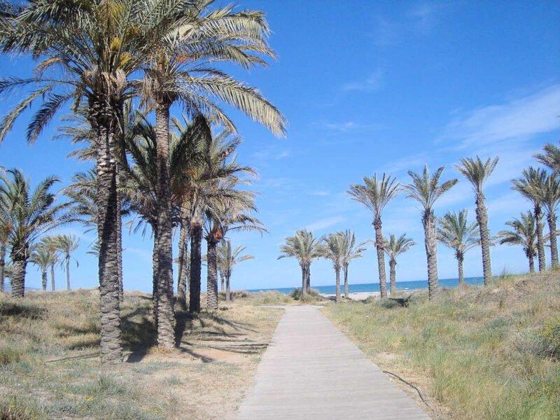 Playa del Pinar en Castellón