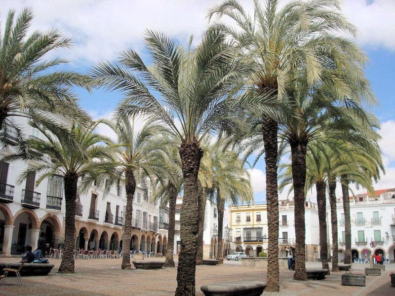 Plaza España de Zafra