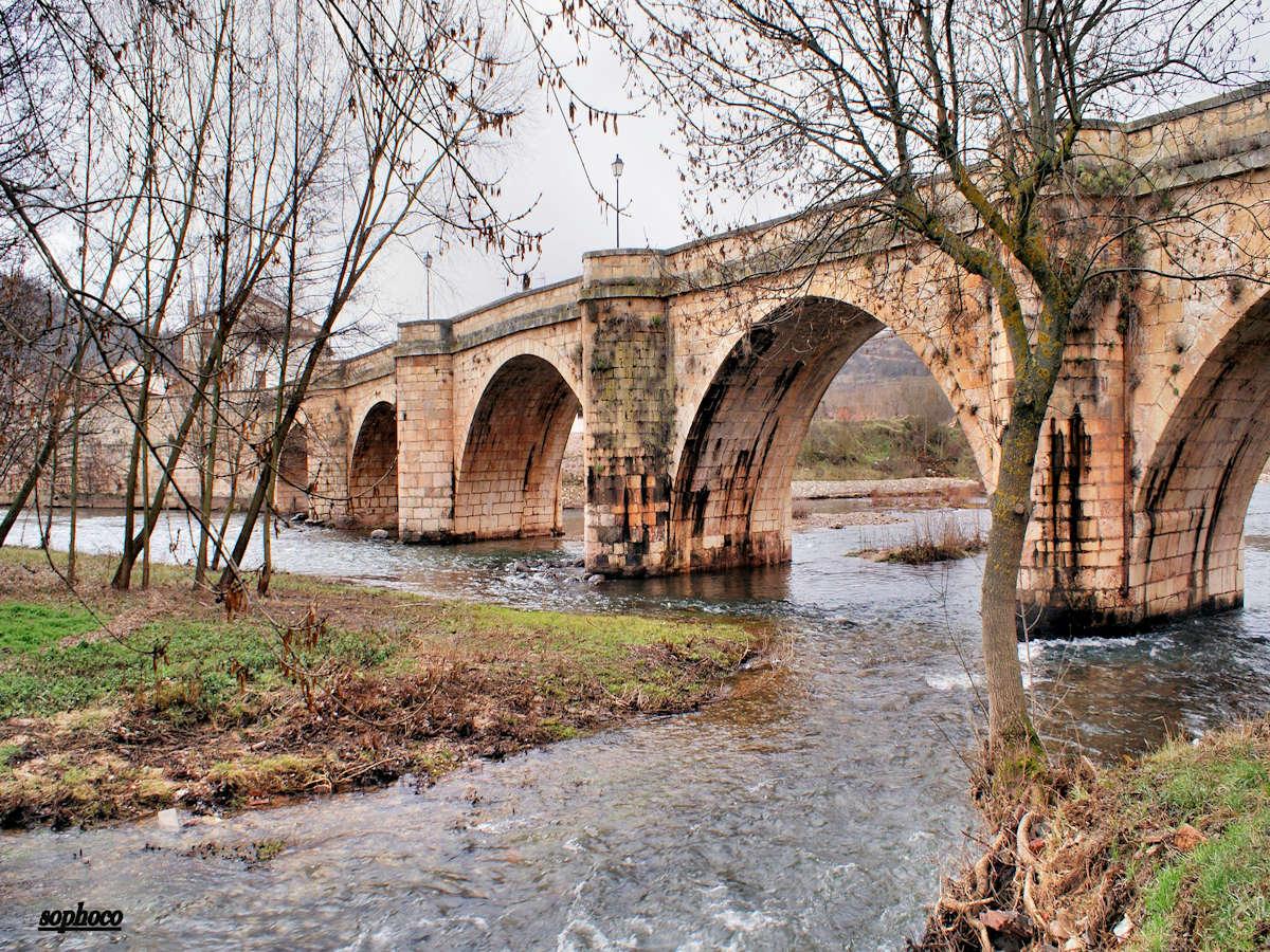 Sabinares-del-Arlanza-Covarrubias-Burgos