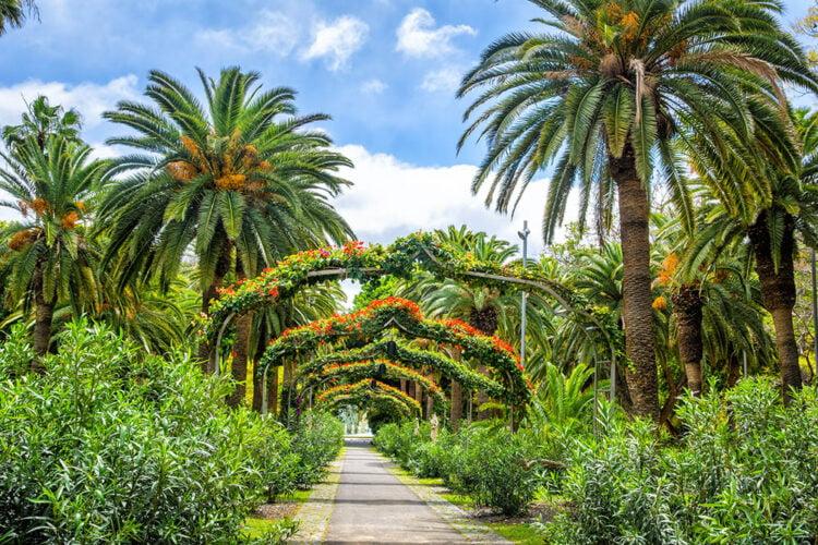 Qué ver en Santa Cruz de Tenerife - Parque García Sanabria
