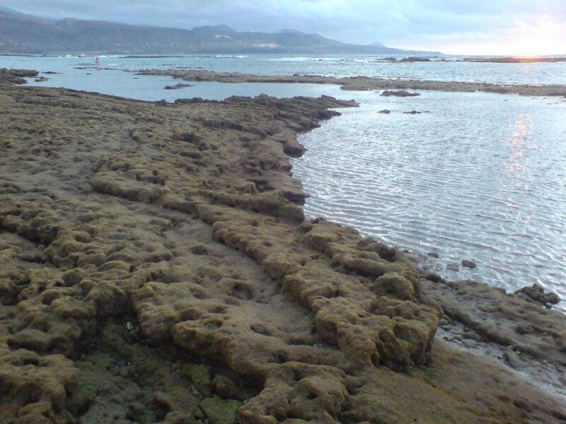 Playa Las Canteras. Las Palmas