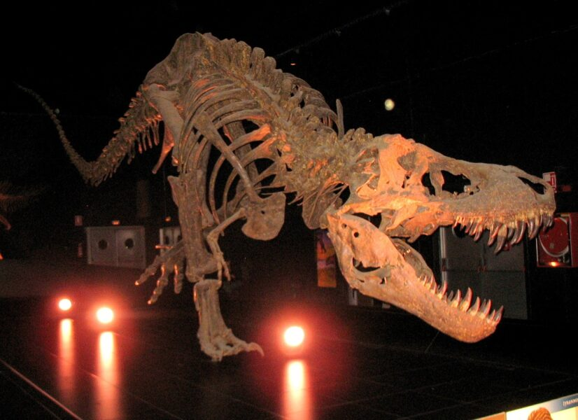Dinopolis Teruel