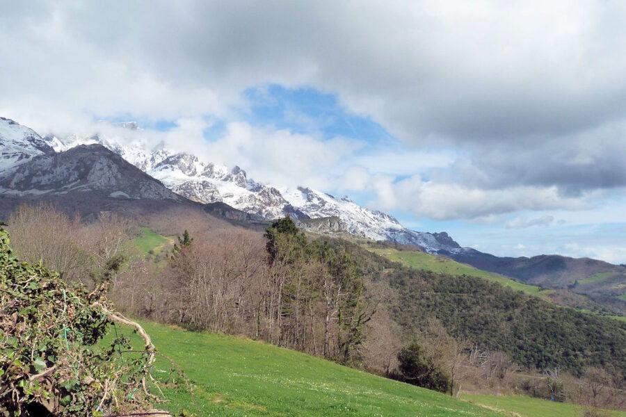 Visita Mogrovejo en Cantabria