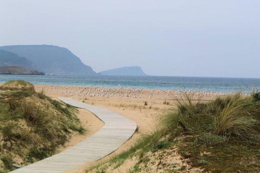 Playa San Román