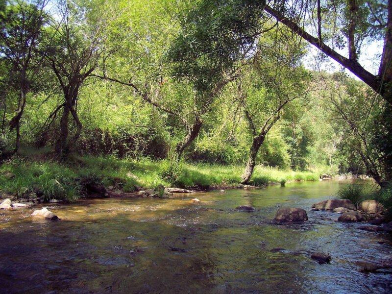 Río Urbión