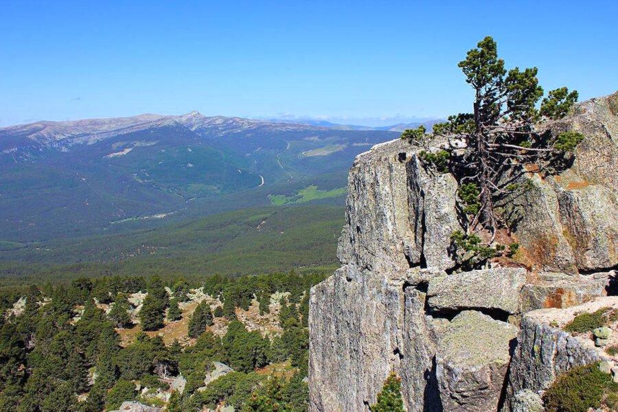 Sierras de Urbión y Cebollera