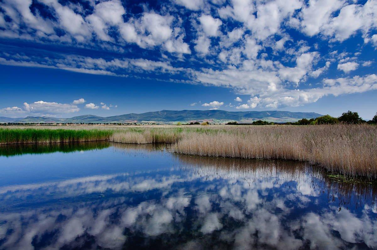 visitar-pueblos-de-Ciudad-Real-Daimiel-Parque-Nacional-de-las-Tablas