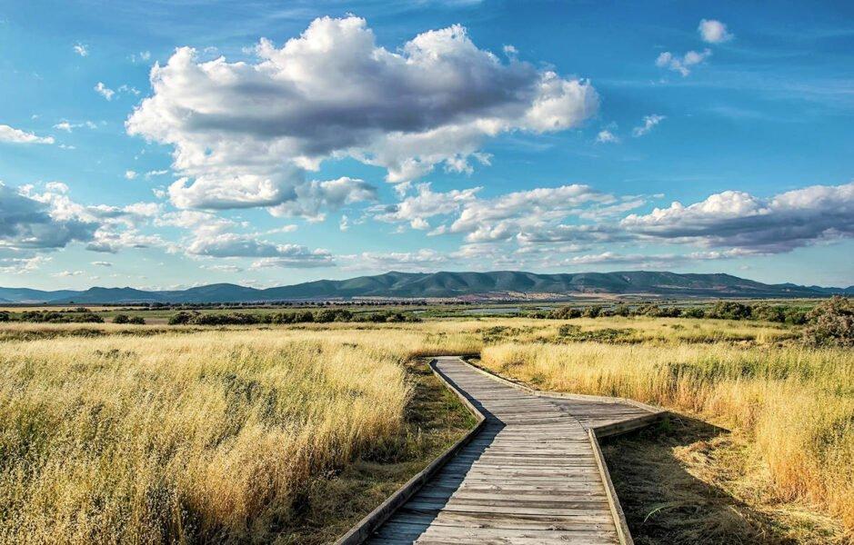 Parque Natural Daimiel