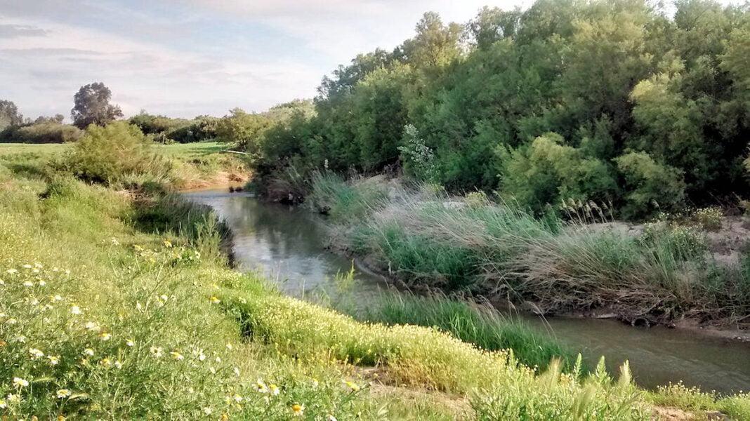Río Guadajoz