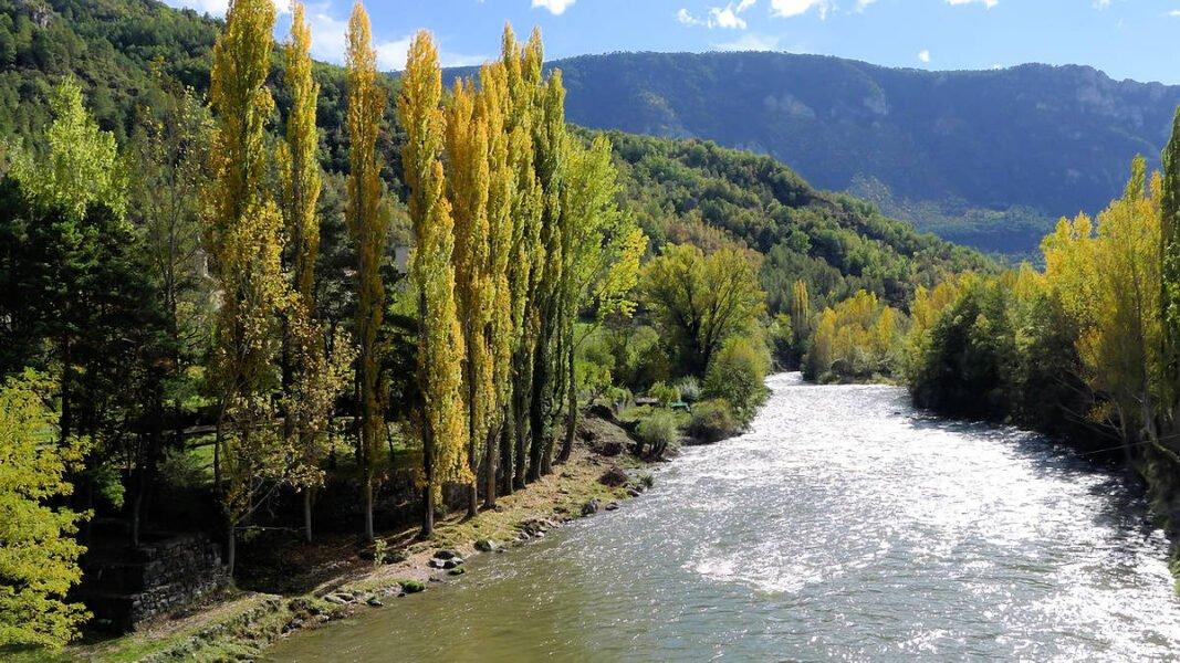 Río Noguera