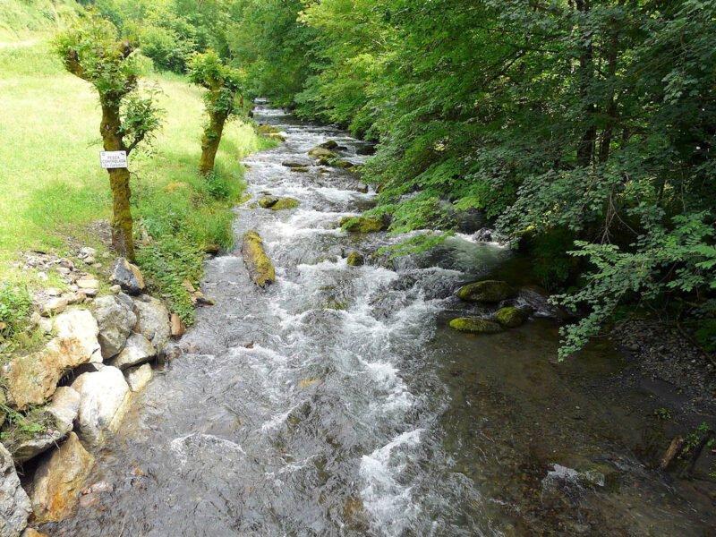 Río Toran