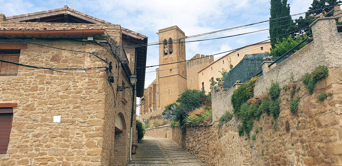 Visita Artajona en Navarra